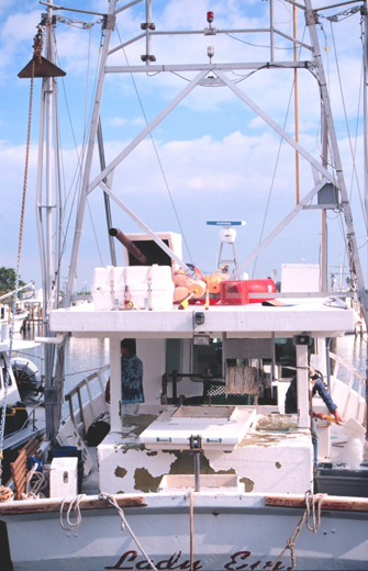 A shark longline fisherman off the coast of Florida.
