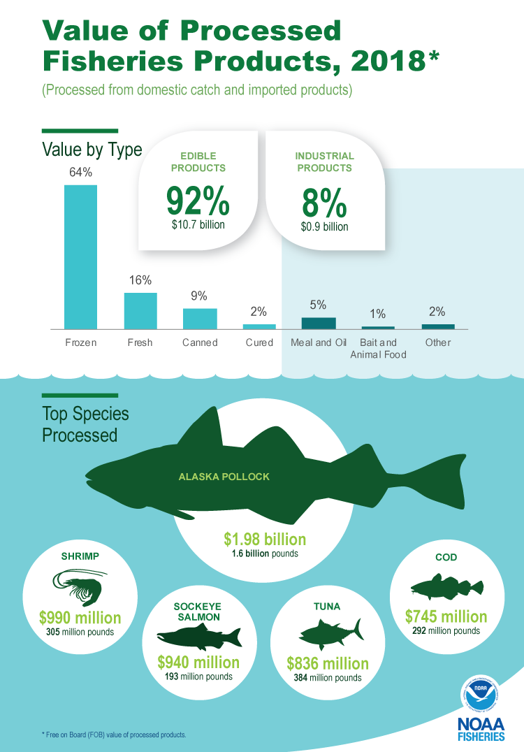 Infographic highlighting 2018 value of processed fisheries products