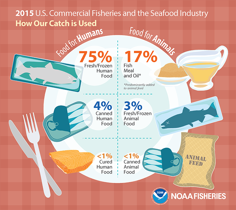 Fisheries of the U.S. 2015 how catch is used