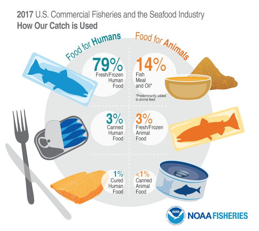 2017 U.S. Commercial Fisheries and Seafood Industry, How Our Catch is Used