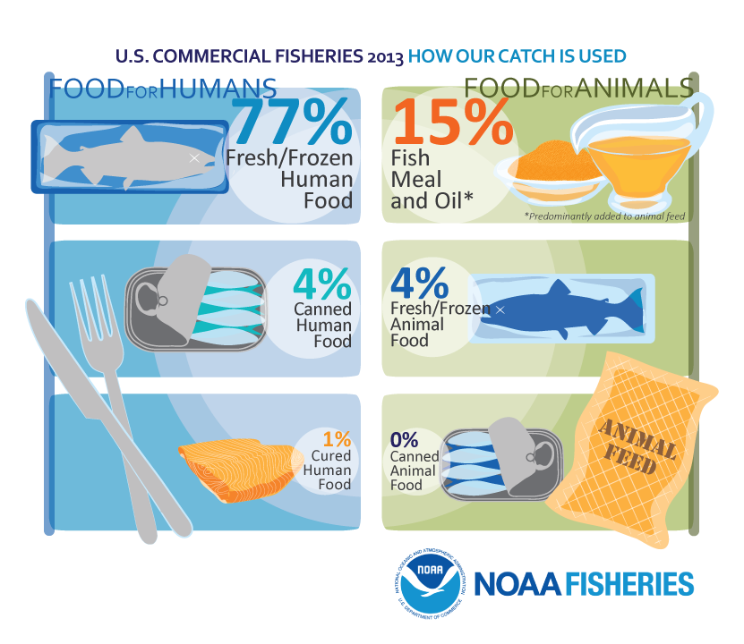 U.S. Commercial Fisheries 2013 How Our Catch is Used
