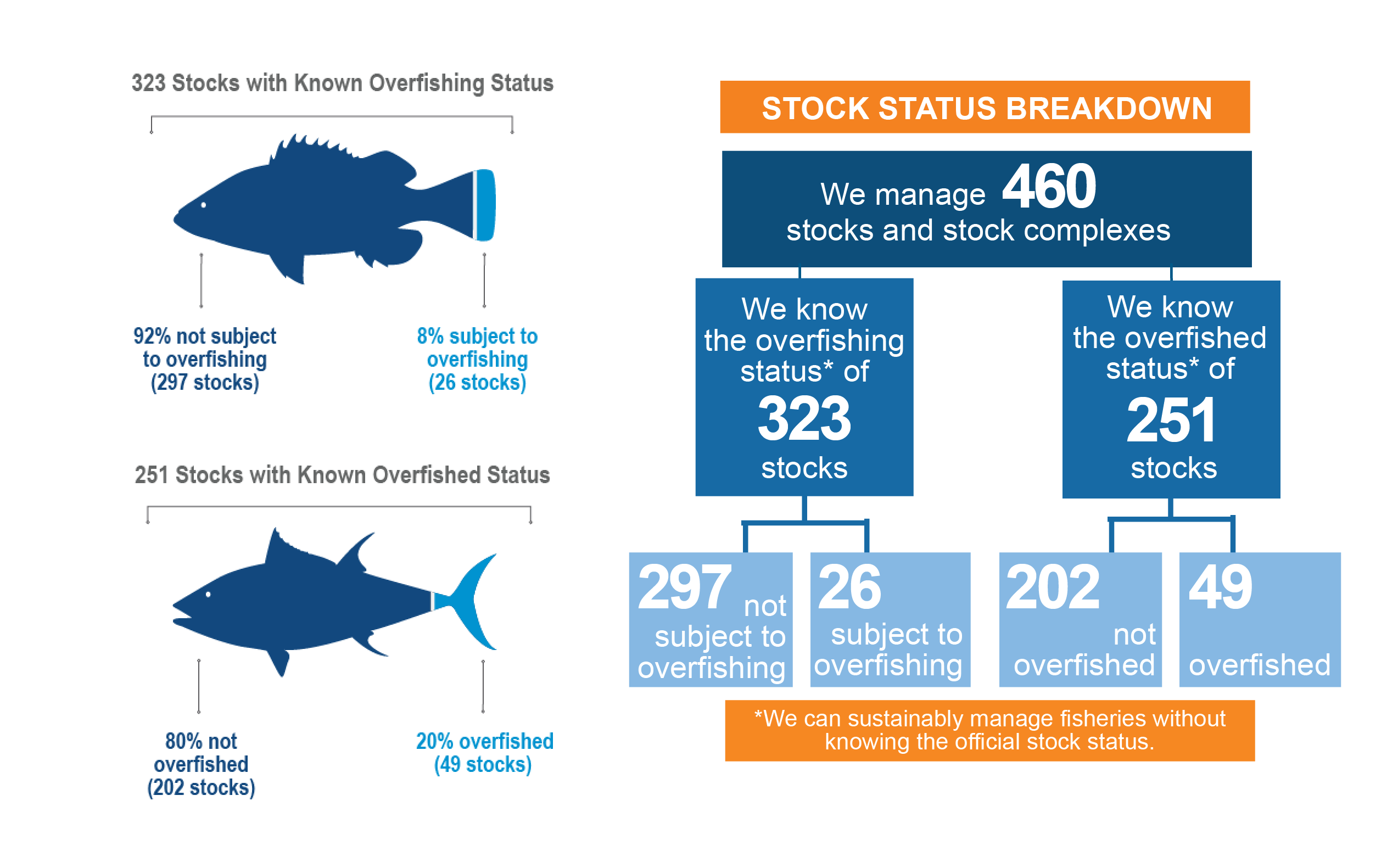 Graphic illustrating break down of stock status in the United States.