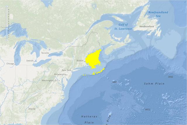 Acadian redfish map.