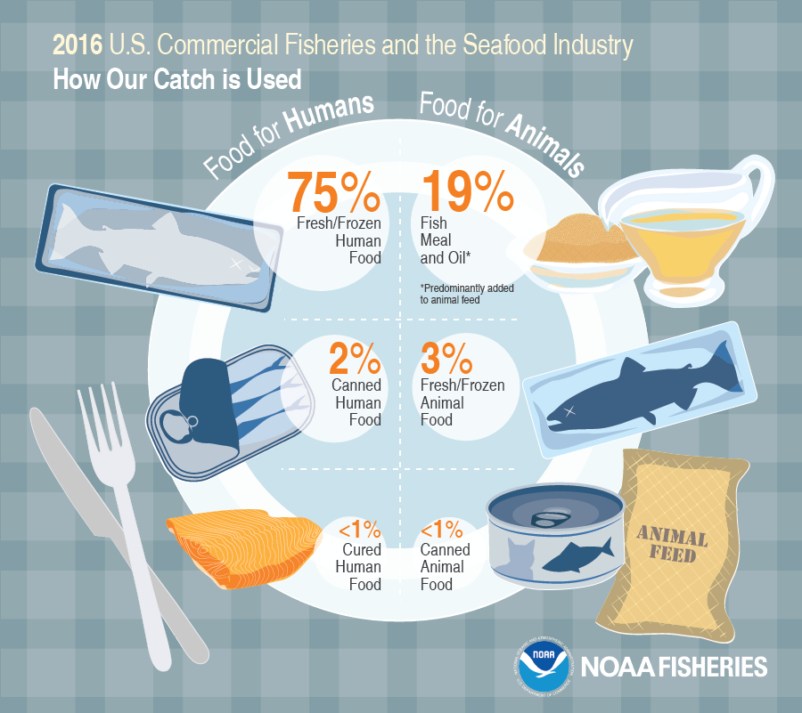 2016 U.S. Commercial Fisheries and the Seafood Industry - How our Catch is Used