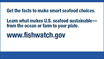 Thumbnail image of FishWatch business card