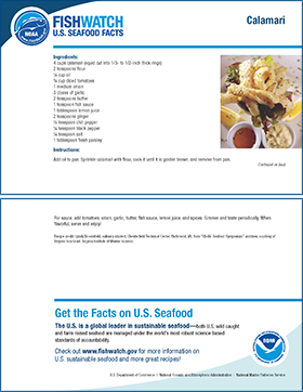 Thumbnail image of market squid recipe card