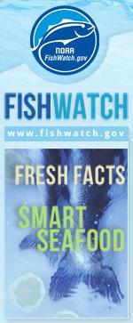 Standard Fishwatch Vertical Web Badge