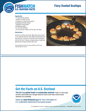 Thumbnail image of scallop recipe card