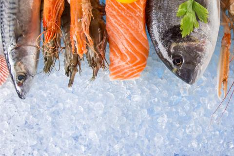 2019 Seafood Month