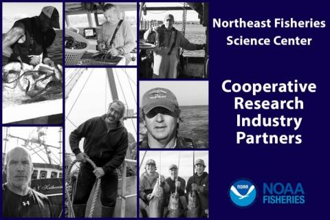 "Collage of photos of fishermen with title plate that reads ""Northeast Fisheries Science Center Cooperative Research Industry Partners"""