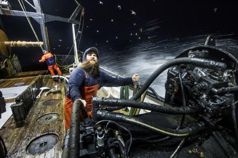 Fishermen aboard Miss Sue, of Newport, Oregon, haul in their catch of rockfish off the West Coast. Credit: John Rae