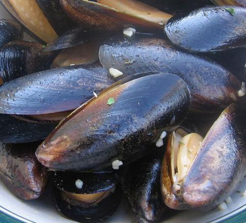 Blue Mussel (farmed) | FishWatch